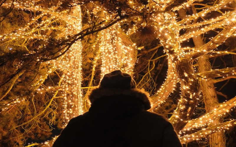 Reise Nach... Christmas Garden Berlin